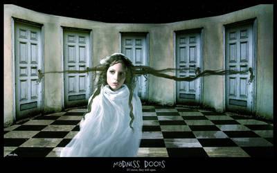 Madness Doors by Luincir