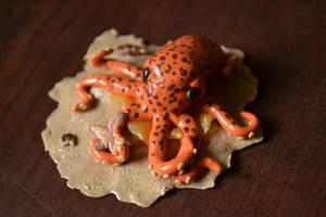 Octopus Beach by GoldenDaffadowndilly