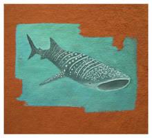 AZ_WhaleShark by Duffzilla