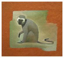 AZ_Vervet Monkey by Duffzilla