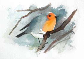 Robin 2 by Duffzilla