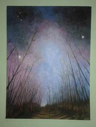 Starry Sky by lidianne