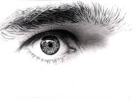 Eye by Obeluss