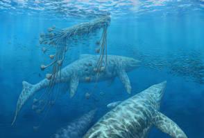 Shastasaurus liangae by NGZver