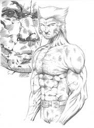 Logan Sketch - work in progress by pa5cal