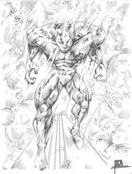 The Silver Surfer by pa5cal
