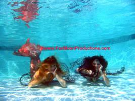 Netted Mermaids by FoxmoonMerfolk