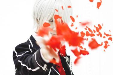 The Fall of Roses ( Zero Kiryu ) by OkariDane