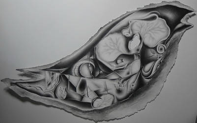 Gray by Milyusia