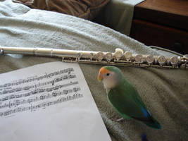 Musical Moonbeam by Moundfreek