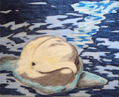 Beluga Smile by Moundfreek