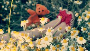 Spring Symphony by Pis7li