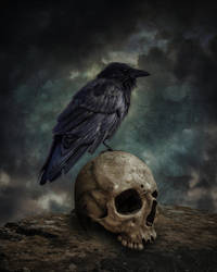 The Crow And The Skull.. by AledJonesDigitalArt
