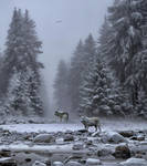 Wolves In The Snow.. by AledJonesDigitalArt