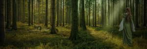 The Forest.. by AledJonesDigitalArt