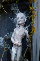MonsterHigh Doll Custom Mod. Spider Web Guy by sankyaku