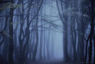 Silent Whispers by Nelleke