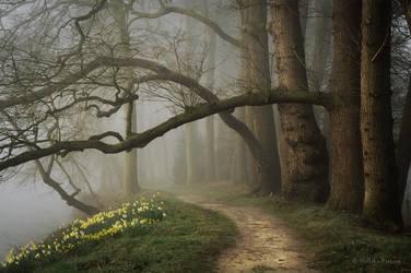 Enter Spring by Nelleke