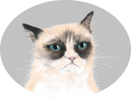Tard the Grumpy cat by ErizoInfernal
