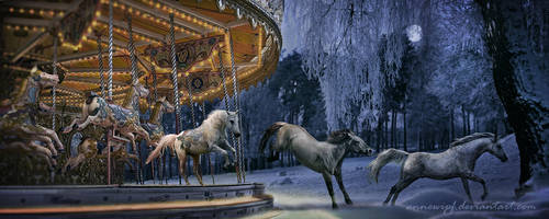 Freedom - The Carousel 2 by annewipf