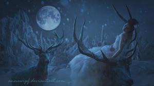 Deers by annewipf