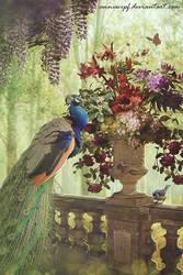 Peacock by annewipf