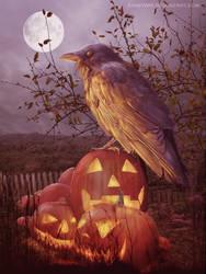 Crow by annewipf
