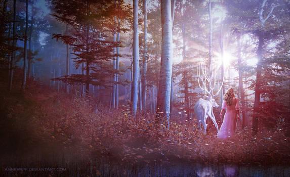 Spirit of the Deer by annewipf