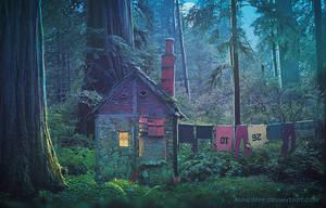 Fairy House by annewipf