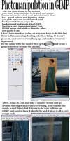 GIMP manipulation tutorial by skateishh
