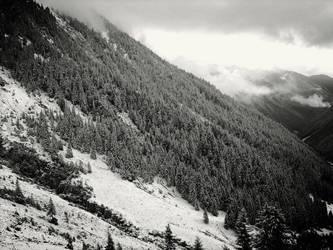 Dirty Snow II by vinterrr