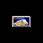 Cuttlefish stamp  by BoenUnknown