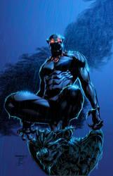 Black Panther by NimeshMorarji