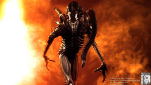 Aliens warrior cg shot II by locusta