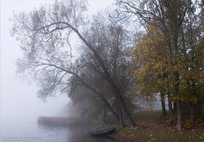 October 12 by rici66