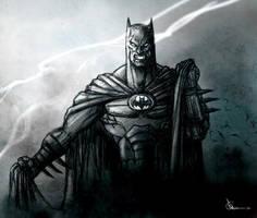 Dark Knight by rayyzer