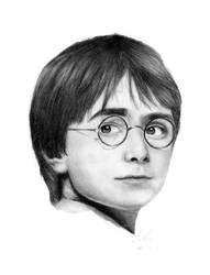 Dear Mr. Potter by eiralleena
