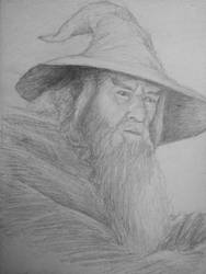 Gandalf the Grey by conhennelly