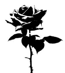 Rose Stencil by Generical