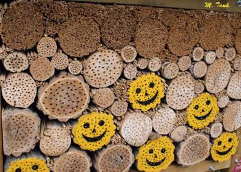 Smiling Logs by Villa-Chinchilla