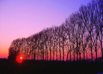 Sunset Kiss by Villa-Chinchilla