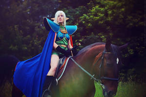 Record of Lodoss War: riding through the woods by ElenaLeetah