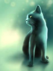 Cat by Vov-Ka