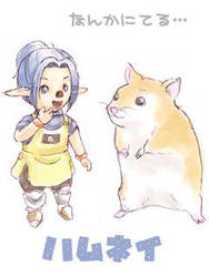 FFXI - Tarutaru and Hamster by powertaiyou
