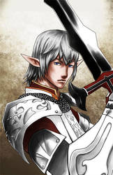 FFXI Elvaan Knight by powertaiyou