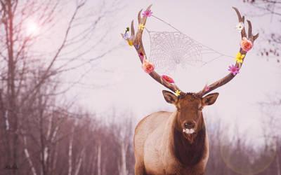 Flower Deer by toinfinity18