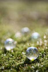 Jewels by piechot