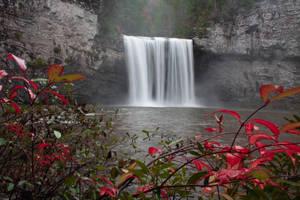 Framing Cane Creek by Silverarrow13