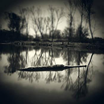 CLXXVIII. ..lake II. by behherit