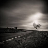 CCL. ..lonely by behherit